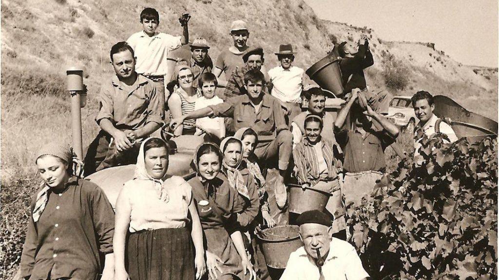 Equipe de vendangeurs dans les années 60